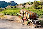 vineyard with barrels, Villeneuve-les-Corbieres, Languedoc-Roussillon, France Stock Photo - Royalty-Free, Artist: phbcz                         , Code: 400-05724429