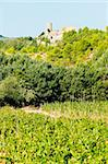 castle in Durban-Corbiere with vineyards, Languedoc-Roussillon, France