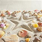 beach with starfish printed in white sand many clam shells as a summer vacation background Stock Photo - Royalty-Free, Artist: lunamarina                    , Code: 400-05724645