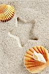 beach white sand with clam shell and star print such as a vacation background Stock Photo - Royalty-Free, Artist: lunamarina                    , Code: 400-05724683