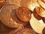 Close-up macro (depth-of-field) shot of $25 Gold and $1 Silver U.S. Bullion Coins. Shot on Canon.