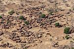 The principal Dogon area is bisected by the Bandiagara Escarpment.  The Dogon are best known for their mythology, their mask dances, wooden sculpture and their architecture. Stock Photo - Royalty-Free, Artist: michelealfieri                , Code: 400-05730831