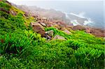 Scenic coastal view of foggy rocky Atlantic shore in Newfoundland, Canada Stock Photo - Royalty-Free, Artist: Elenathewise                  , Code: 400-05731753
