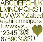 Collection of green alphabets, numbers and special characters created from leaf Stock Photo - Royalty-Free, Artist: smarnad                       , Code: 400-05732386