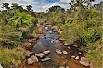 creek and fern trees in tropical tablelands Queensland Australia unspoild pristine and pure wilderness beautiful wild nature Stock Photo - Royalty-Free, Artist: kikkerdirk                    , Code: 400-05735781