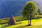 Summer mountain landscape with haystack and lonely tree
