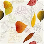 Autumn vector leafs texture - fall seamless pattern Stock Photo - Royalty-Free, Artist: orsonsurf                     , Code: 400-05737319