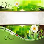 Green background with daisy and drops of water Stock Photo - Royalty-Free, Artist: Merlinul                      , Code: 400-05742209