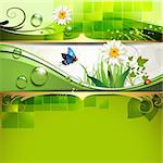 Green background with daisy and drops of water Stock Photo - Royalty-Free, Artist: Merlinul                      , Code: 400-05742210