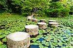 Zen stone path in a Japanese Garden near Heian Shrine.Stones are surrounded by lotus leaves Stock Photo - Royalty-Free, Artist: Fyletto                       , Code: 400-05743523