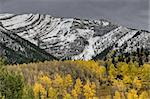 Rocky Mountains Kananaskis Alberta Canada in the Autumn Fall Stock Photo - Royalty-Free, Artist: pictureguy                    , Code: 400-05748673