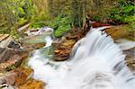 Beautiful waterfall flows through the pine forests of Glacier National Park in Montana.