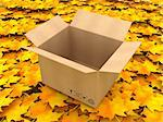 3D Illustration Opened cardboard box on Orange Leaves