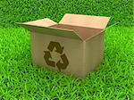 3D Illustration Opened cardboard box on Green Grass