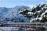 Snowfall in Kyko, Arashiyama Stock Photo - Premium Royalty-Free, Artist: Robert Harding Images, Code: 6106-05758714
