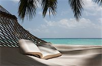 Book on a hammock under a palm Stock Photo - Premium Royalty-Freenull, Code: 6106-05758767