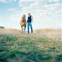 USA, Utah, Mapleton, Cowboy standing with horse at pasture, focus on grass Stock Photo - Premium Royalty-Freenull, Code: 640-05761380
