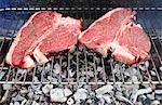 Uncooked T-bone steaks on barbecue grill Stock Photo - Premium Royalty-Free, Artist: Photocuisine, Code: 695-05771649