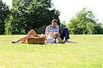 Couple enjoying picnic in park Stock Photo - Premium Royalty-Free, Artist: Uwe Umsttter, Code: 695-05771739