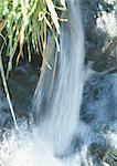 Water flowing Stock Photo - Premium Royalty-Free, Artist: Glow Décor, Code: 695-05772567