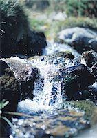 streaming - Water flowing in creekbed Stock Photo - Premium Royalty-Freenull, Code: 695-05772568