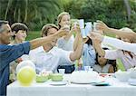 Outdoor birthday party Stock Photo - Premium Royalty-Free, Artist: Tim Mantoani, Code: 695-05779065