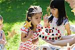 Girl blowing out candles on birthday cake at outdoor birthday party Stock Photo - Premium Royalty-Free, Artist: Universal Images Group, Code: 695-05779995