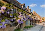 Purple flowering wisteria on a Cotswold stone house wall in the village of Broadway, The Cotswolds, Worcestershire, England, United Kingdom, Europe Stock Photo - Premium Rights-Managed, Artist: Robert Harding Images, Code: 841-05782385