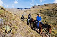 Horse riding in El Cocuy National Park, Colombia, South America Stock Photo - Premium Rights-Managednull, Code: 841-05782640