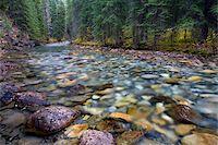 streams scenic nobody - Johnston Canyon Creek, Banff National Park, Alberta, UNESCO World Heritage Site, Canada, North America Stock Photo - Premium Rights-Managednull, Code: 841-05785138