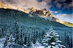 Snow covered pine forest backed by soaring Rocky Mountains, Banff National Park, UNESCO World Heritage Site, Alberta, Canada, North America Stock Photo - Premium Rights-Managed, Artist: Robert Harding Images, Code: 841-05785139