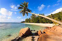 seychelles - Shoreline at Anse Severe, La Digue, Seychelles Stock Photo - Premium Royalty-Freenull, Code: 600-05786205