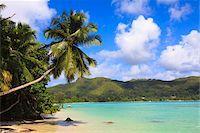 seychelles - Shoreline at Anse a la Mouche, Mahe, Seychelles Stock Photo - Premium Royalty-Freenull, Code: 600-05786216