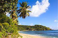 seychelles - Shoreline of Anse Takamaka, Mahe, Seychelles Stock Photo - Premium Royalty-Freenull, Code: 600-05786222