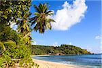 Shoreline of Anse Takamaka, Mahe, Seychelles Stock Photo - Premium Royalty-Free, Artist: F. Lukasseck, Code: 600-05786222