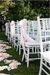 Chairs Arranged for Wedding Stock Photo - Premium Rights-Managed, Artist: Ikonica, Code: 700-05786589