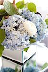Close-up of Flower Arrangement Stock Photo - Premium Rights-Managed, Artist: Ikonica, Code: 700-05786675