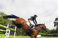 equestrian - Horseback Rider Jumps over the Hurdle Stock Photo - Premium Royalty-Freenull, Code: 622-05786740