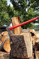 forestry - Axe in log stump Stock Photo - Premium Royalty-Freenull, Code: 693-05794374