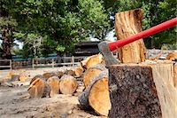 forestry - Axe in tree stump Stock Photo - Premium Royalty-Freenull, Code: 693-05794375
