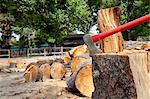 Axe in tree stump Stock Photo - Premium Royalty-Free, Artist: Ron Fehling, Code: 693-05794375