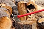 An axe wedged into a tree stump Stock Photo - Premium Royalty-Free, Artist: Ron Fehling, Code: 693-05794377