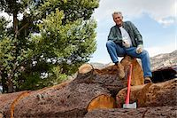 forestry - Low angle view of man sitting on a huge tree trunk Stock Photo - Premium Royalty-Freenull, Code: 693-05794393