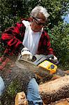Forestry worker cutting tree with chainsaw Stock Photo - Premium Royalty-Free, Artist: ableimages, Code: 693-05794404