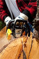 forestry - Close-up view of lumberjack with electric saw Stock Photo - Premium Royalty-Freenull, Code: 693-05794406