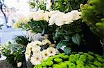 Bunch of fresh flowers at florist shop Stock Photo - Premium Royalty-Free, Artist: Water Rights, Code: 693-05794557