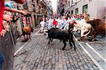 Seventh Encierro (running of the bulls), San Fermin festival, Pamplona, Navarra (Navarre), Spain, Europe Stock Photo - Premium Rights-Managed, Artist: Robert Harding Images, Code: 841-05795457