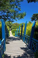 Blue Japanese-style bridge in the sub-tropical Abbey Gardens, Island of Tresco, Isles of Scilly, England, United Kingdom, Europe Stock Photo - Premium Rights-Managednull, Code: 841-05796049