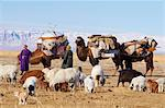 Nomadic transhumance with bactrian camels in winter landscape, Province of Khovd, Mongolia, Central Asia, Asia Stock Photo - Premium Rights-Managed, Artist: Robert Harding Images, Code: 841-05796519