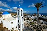 Palm tree and church, Ios Island, Cyclades, Greek Islands, Greece, Europe Stock Photo - Premium Rights-Managed, Artist: Robert Harding Images, Code: 841-05796750